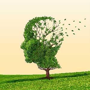 Gehirnbereiche aktivieren